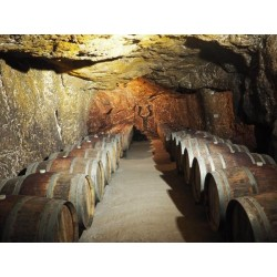 Caves domaine des ouches