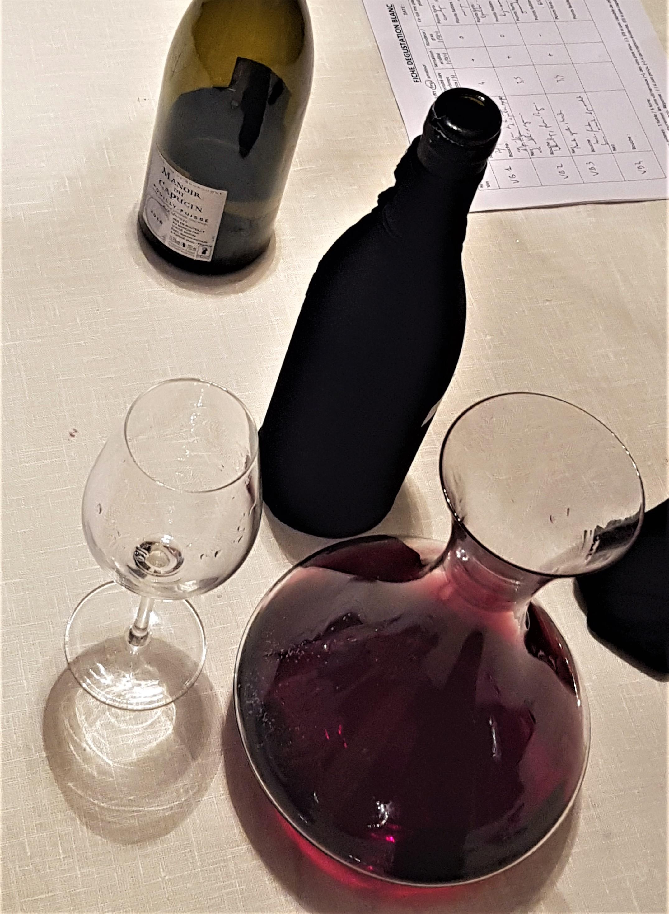 Dégustation de vins rouges